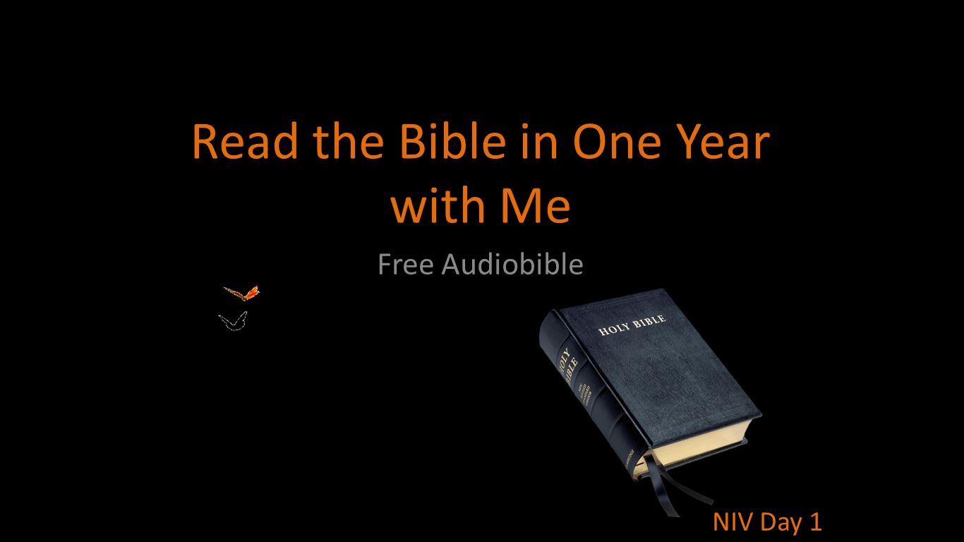 Bible in a Year - New International Version - Downloadable MP3s