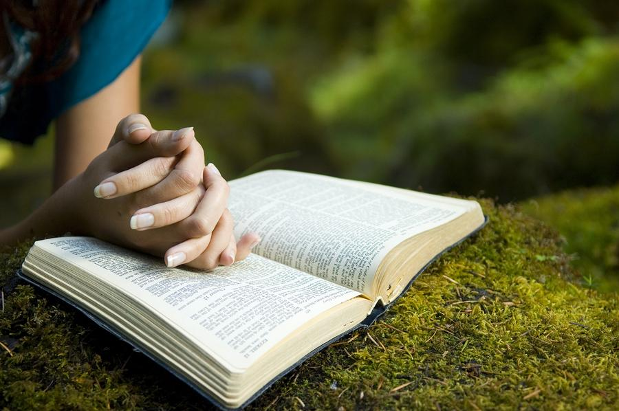 Bible in a Year - New International Version - Usage Rights and How to Stick With the Plan