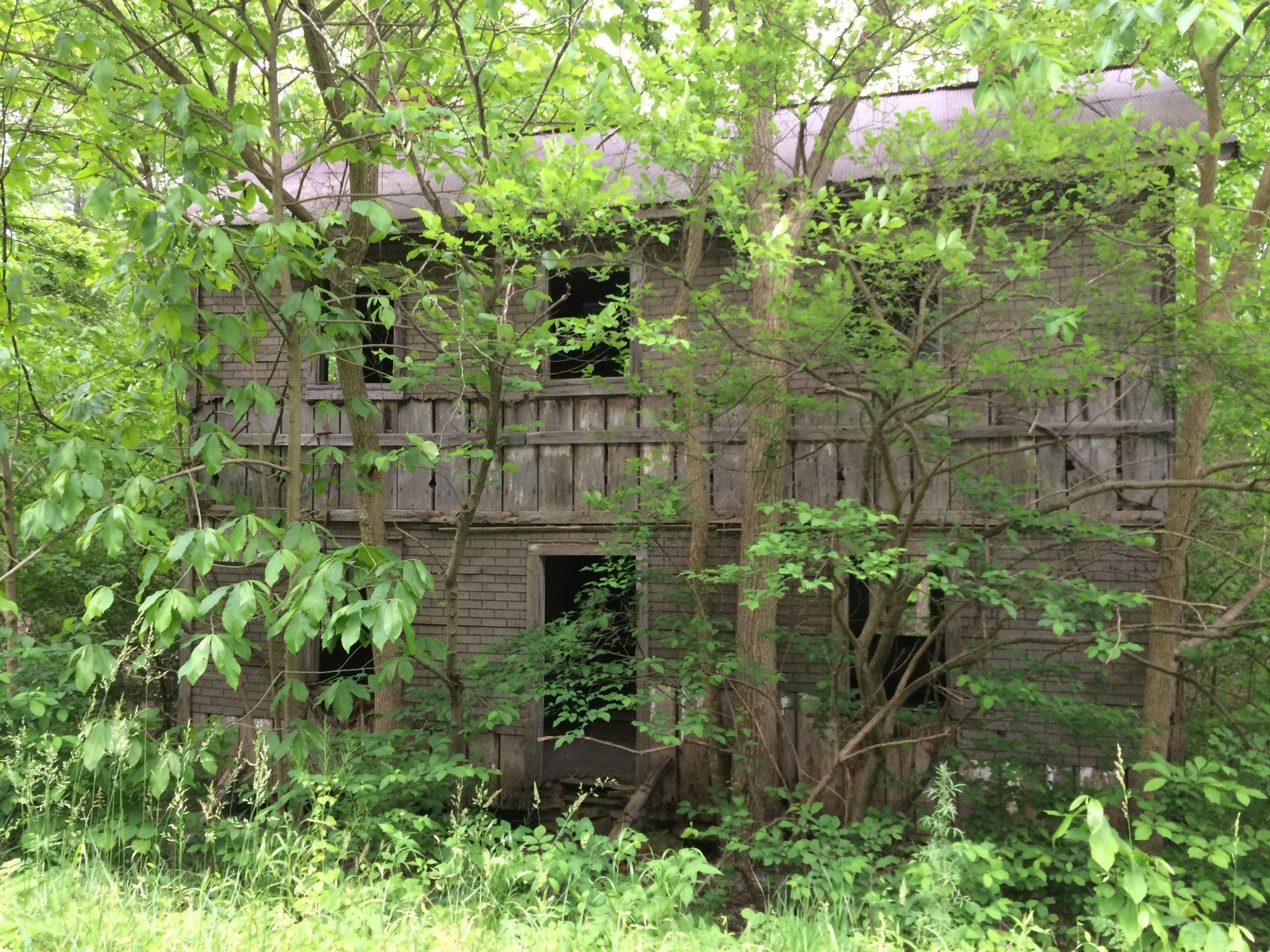 Pretty Abandoned Places - Mountain Home in Paw Paw